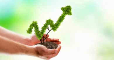 Tips-for-Growing-a-Successful-Business